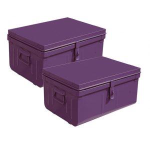Le lot de 2 malles violettes - Castorama